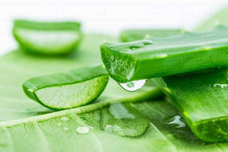 Nha đam là một nguyên liệu trị mụn từ tự nhiên mà bạn nên sử dụng