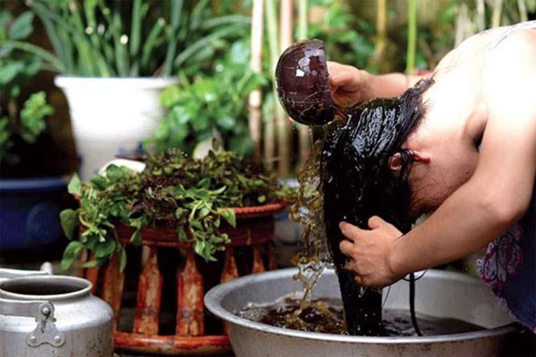 Sử dụng thảo dược hỗ trợ trị rụng tóc được nhiều người lựa chọn vì an toàn