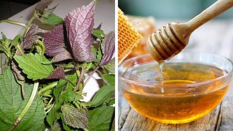 Công thức trị mụn từ tía tô và mật ong